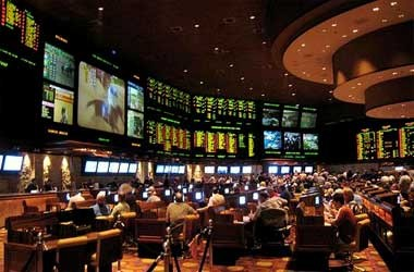 Casino sports betting back and lay betting betfair