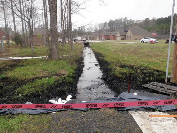 The Mayflower oil spill robbed Michelle Ward of her middle-class