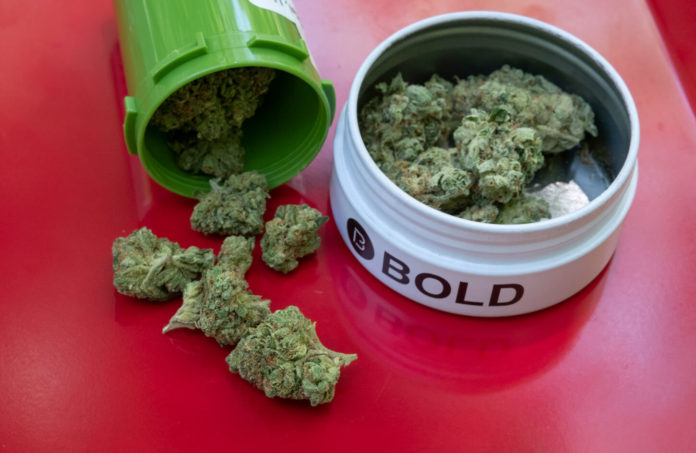 picture of medical marijuana from Bold Team