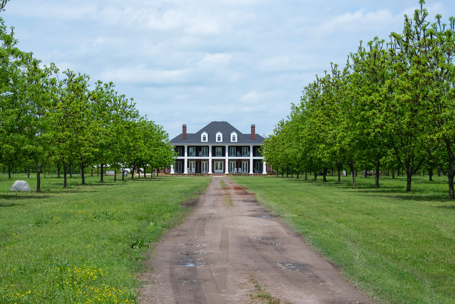 A picture of Charlotte Teresa Plantation in Pope County